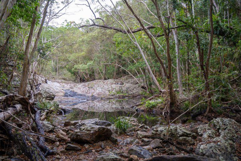 Surprise Creek