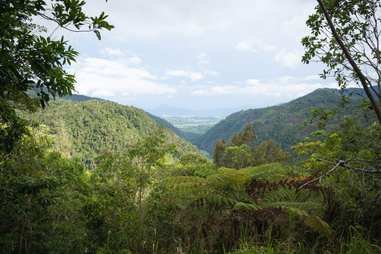 Wrights Lookout