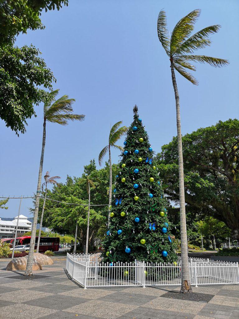 christmas tree cairns