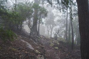 Genoa Peak Walk